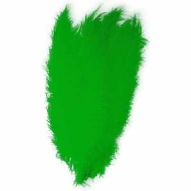Carnavalskleding grote veer/struisvogelveren groen verkleed accessoir