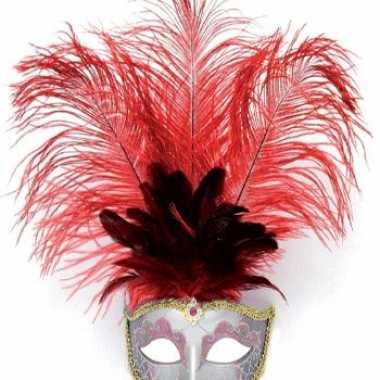 Carnavalskleding oog masker rode veren arnhem