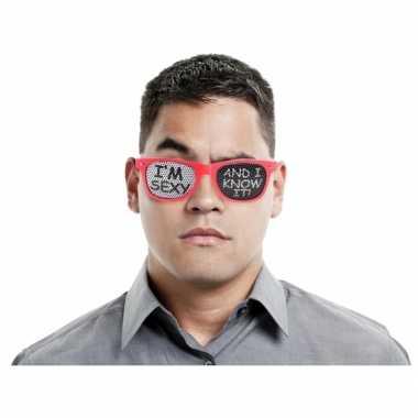 Carnavalskleding party bril i am sexy arnhem