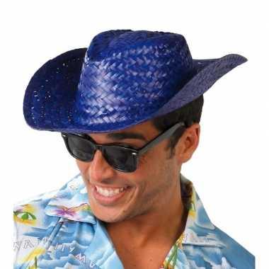 Carnavalskleding toppers blauwe cowboy/strohoed volwassenen arnhem