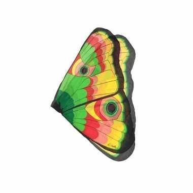 Carnavalskleding  Vlinder vleugels gekleurd kids Arnhem