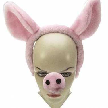 Carnavalskleding x stuks diadeem varkensoren neus dieren verkleedsetj