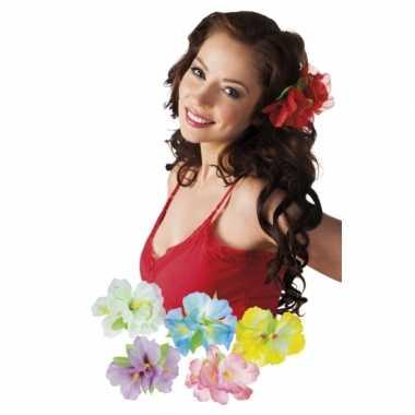 Carnavalskleding x stuks hawaii haarbloemen clip arnhem