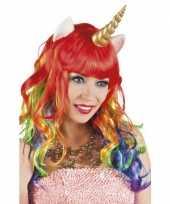 Carnavalskleding eenhoorn regenboog pruik arnhem