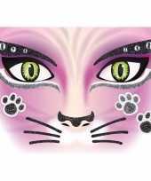 Carnavalskleding gezicht stickers kat vel arnhem