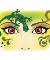 Carnavalskleding gezicht stickers salamander vel arnhem