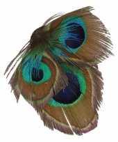 Carnavalskleding haarbloem pauwveertjes groen blauw arnhem