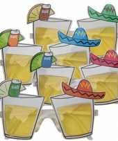 Carnavalskleding mexico bril tequila glazen arnhem