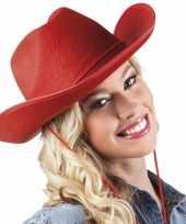 Carnavalskleding rode cowboyhoed vilt arnhem