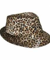 Carnavalskleding trilby hoedje luipaard print arnhem 10054365