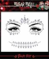 Carnavalskleding zilveren day of the dead sugar skull make up steentjes set arnhem