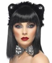 Katten verkleed carnavalskleding arnhem
