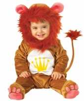 Leeuwen baby carnavalskleding arnhem